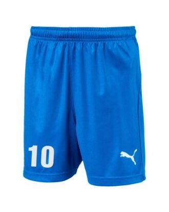 Puma Liga Blå Junior Fodbold Shorts med Tryk