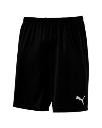 Puma ftblPLAY Shorts Sort Herre