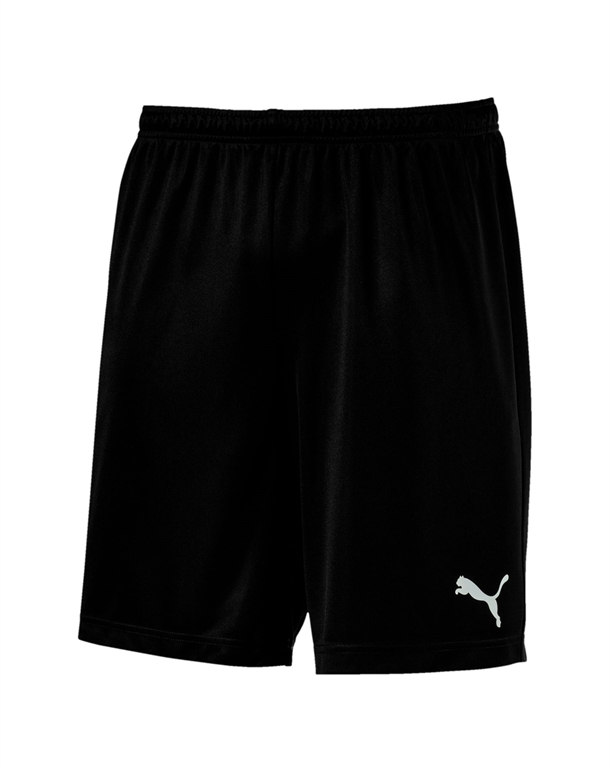 Puma ftblPLAY  Shorts Sort Herre