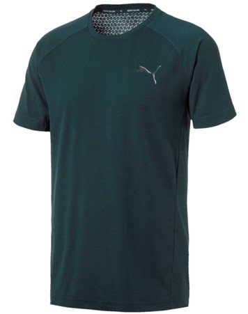 Puma T-shirt Evostripe Move Tee Grøn Herre 1