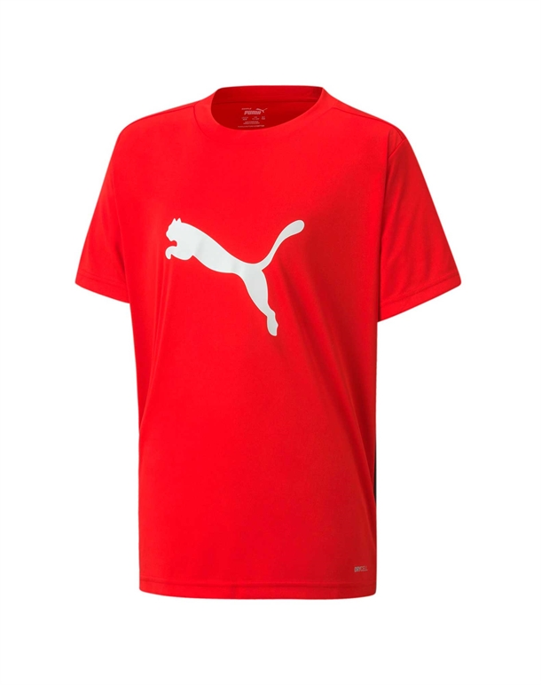 Puma ftblPLAY Logo T-shirts Rød Børn 1